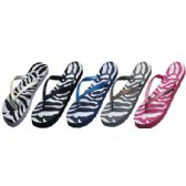 Wholesale Footwear Ladies Flip Flops Zebra Print Assorted